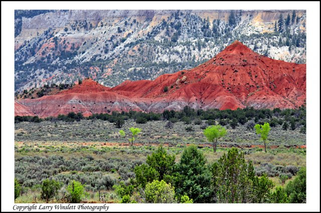 Ghost Ranch 2 - Abiquiu, New Mexico